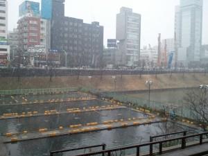 2011-03-07_093305.jpg