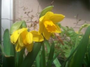 2012-02-23_133650.jpg